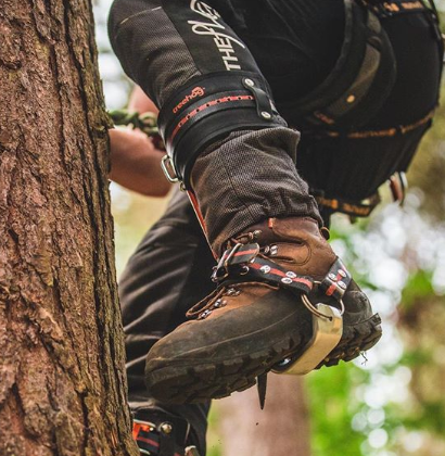 climbing spurs for hunting